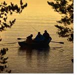 Законопроект о любительской рыбалке примут до декабря